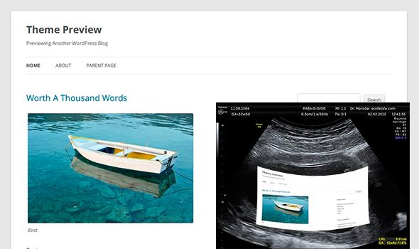 Cómo crear un tema hijo en Wordpress?